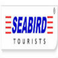 Sea Bird Travels