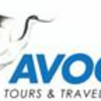 Avocet Tours & Travel