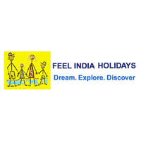 Feel India Tours & Travels
